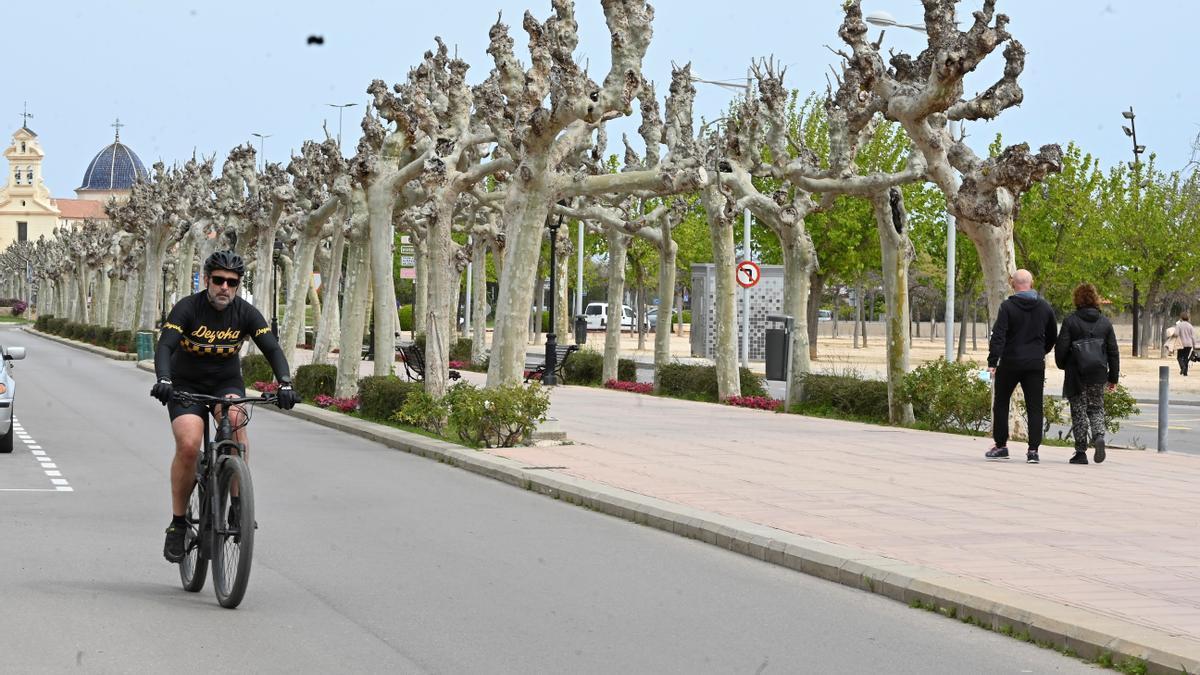 Estado actual de la avenida de Lledó de Castelló