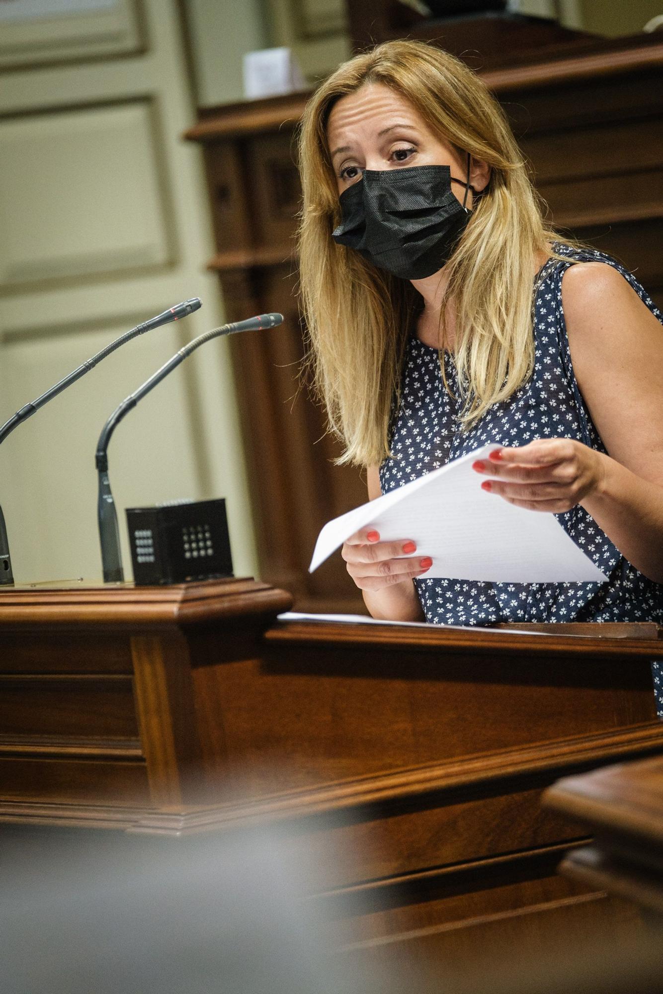 Pleno Extraordinario del Parlamento de Canarias