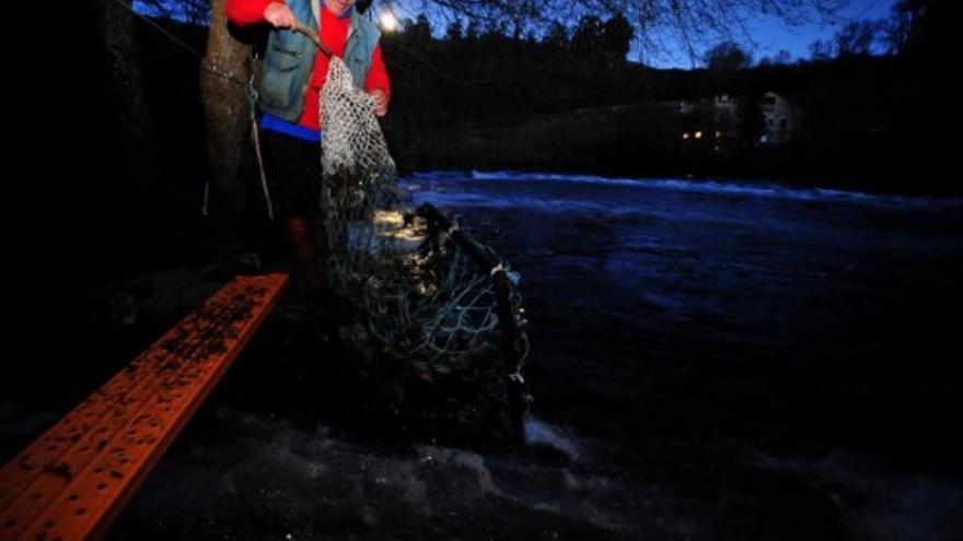 Una noche en el Ulla para capturar lamprea