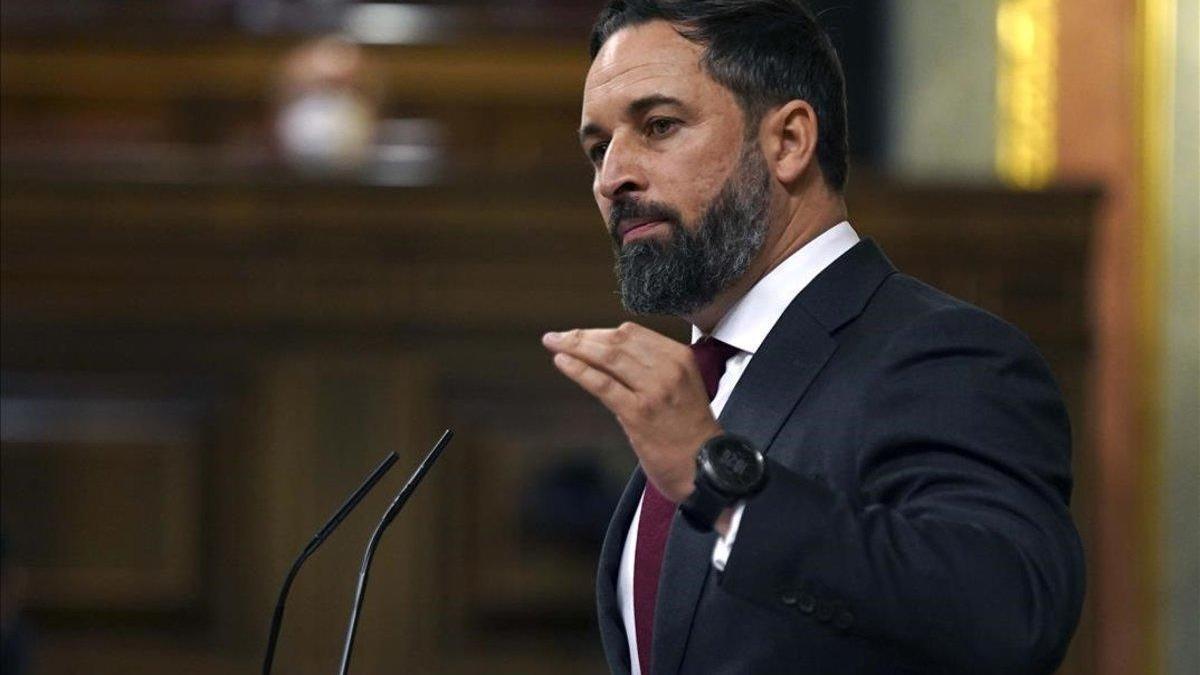 Abascal en la seva intervenció al Congrés