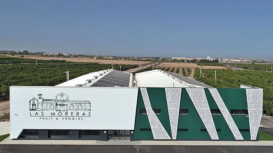 El grupo inmobiliario TM lanza la marca Las Moreras para ampliar su negocio agrícola
