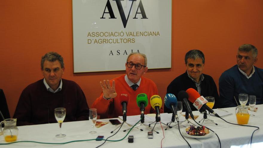 """AVA exige a la Generalitat y al Gobierno soluciones """"reales"""" ante la crisis citrícola"""