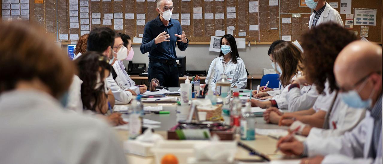 El equipo de la unidad de paliativos del Lluis Alcanyís, en plena reunión sobre la situación de sus pacientes.