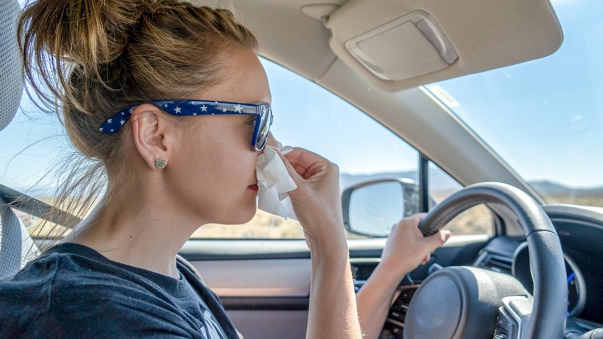 Alergia y conducción: 9 consejos para viajar con seguridad