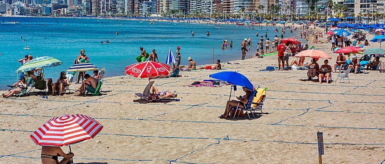 Las parcelas de la playa de Levante, algunas vacías, a pesar de que todos los días se completa el aforo en la plataforma web.