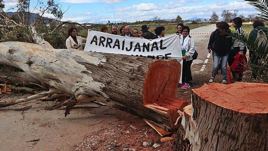 Ecologistas en Acción pide actualizar el PGOU para proteger Arraijanal