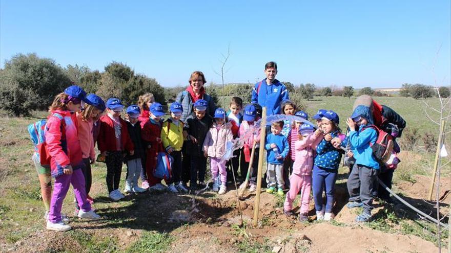 Los niños reforestan Zóñar