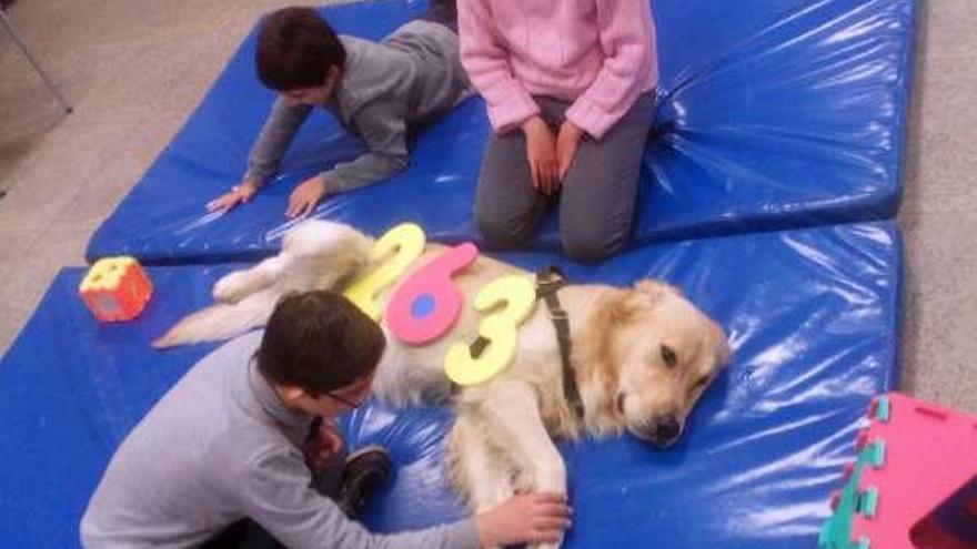 Nueva edición del taller de canoterapia para estimular a niños con discapacidad