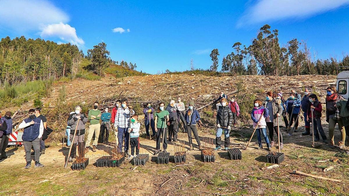 Voluntarios y comuneros se disponen a plantar en una zona a recuperar. |   // ANXO GUTIÉRREZ
