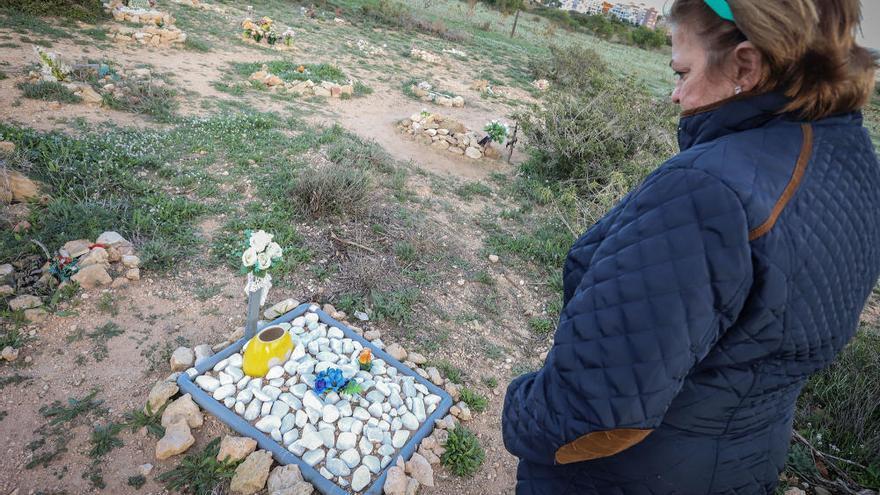 Ciudadanos de Torrevieja pide al Ayuntamiento un bosque cementerio para mascotas