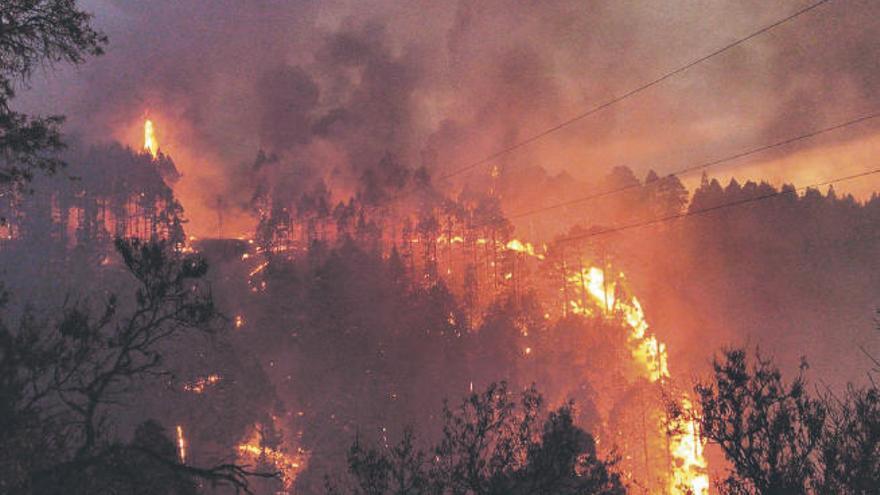 Los incendios de La Palma costaron a Canarias 179.781 euros
