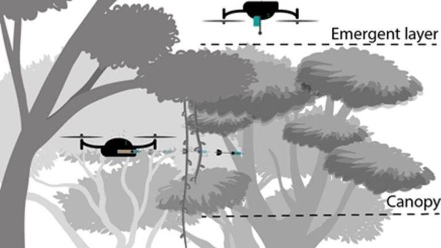 Los drones sustituyen a los duendes del bosque