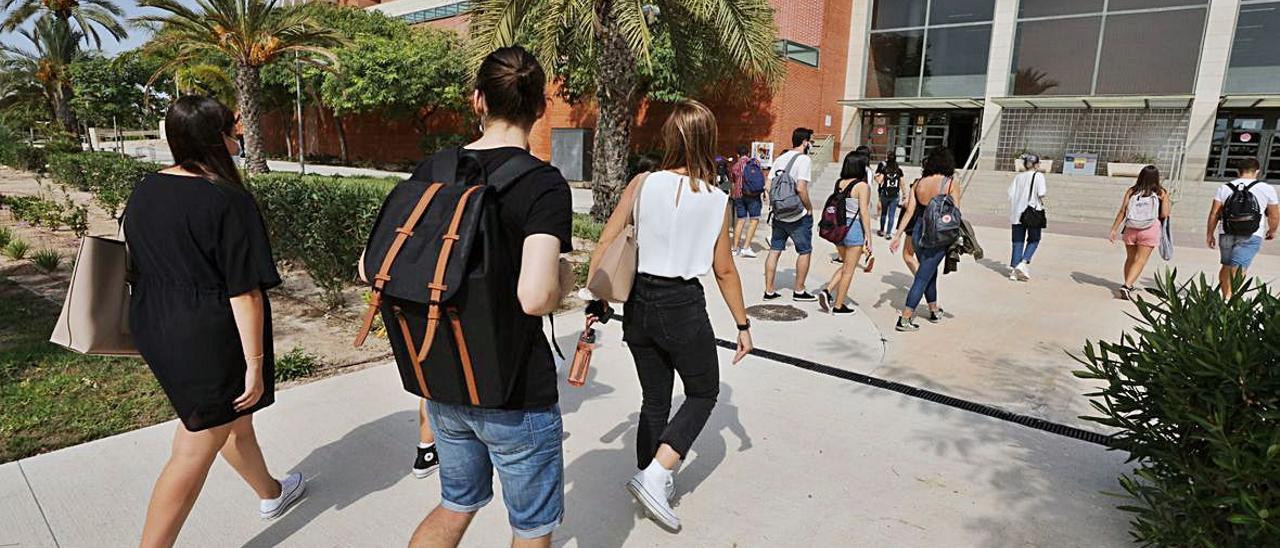 Los estudiantes de primer curso en el campus de Alicante.