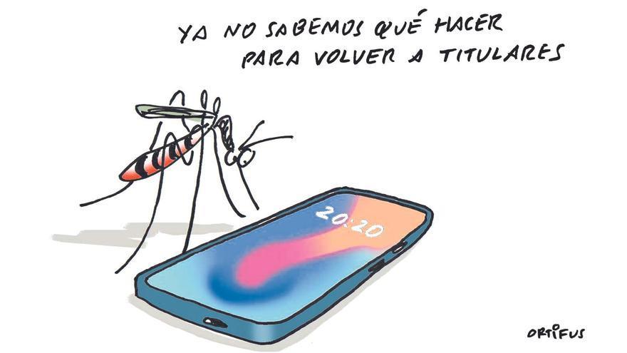 El mosquito tigre aumenta en el último año un 31,8 % en los municipios valencianos