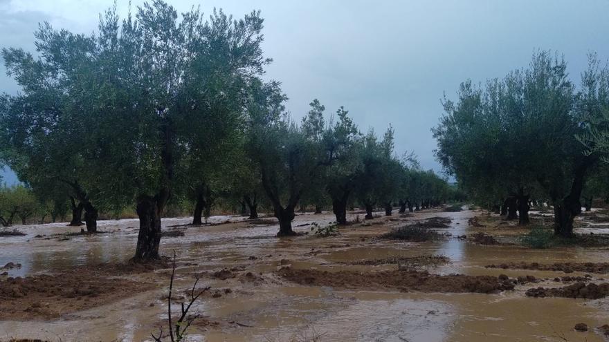 Así arrecian las lluvias en la Font de la Figuera