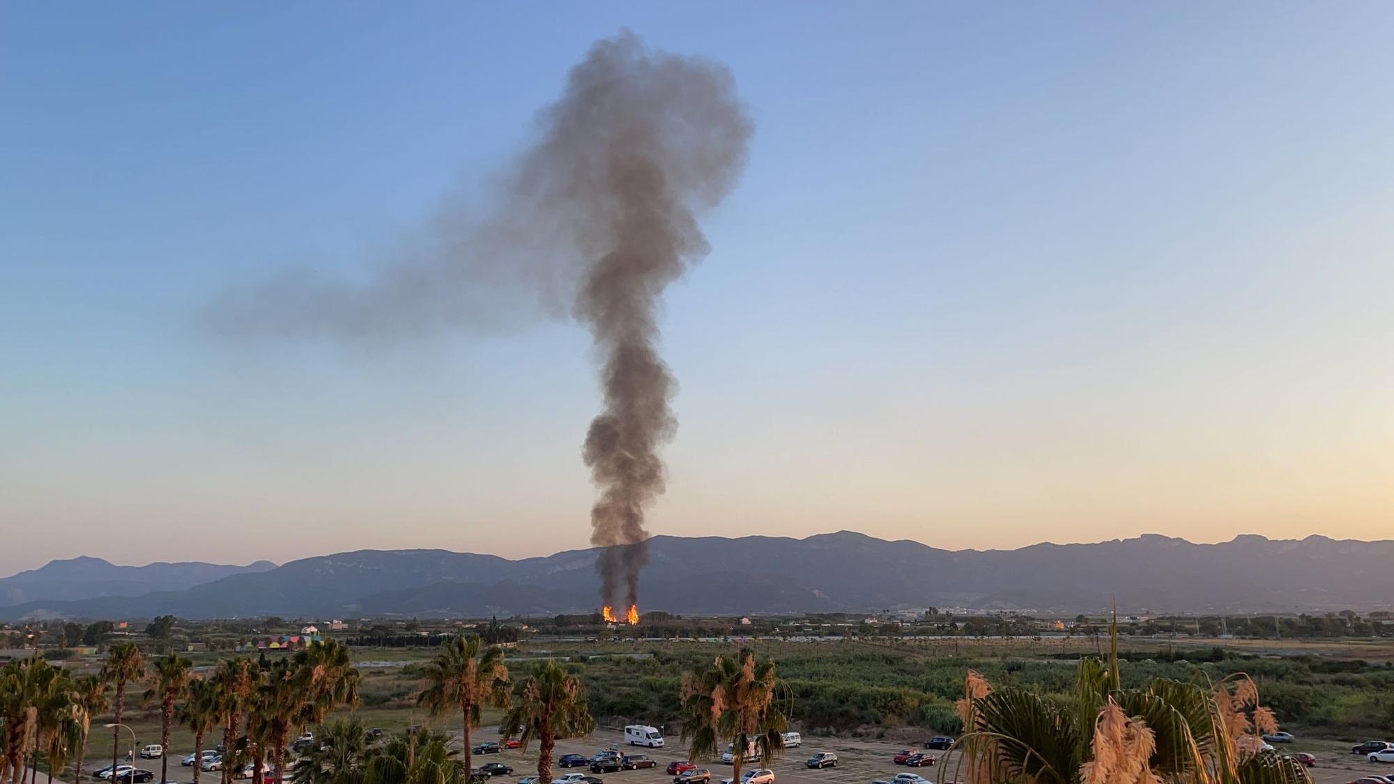 Una gran columna de humo levanta las alarmas por dos incendios declarados en un palmeral de Cullera