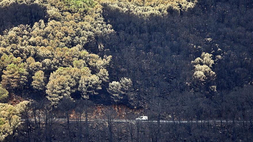Los pueblos afectados por el incendio piden incluir a Sierra Bermeja en el Parque Nacional