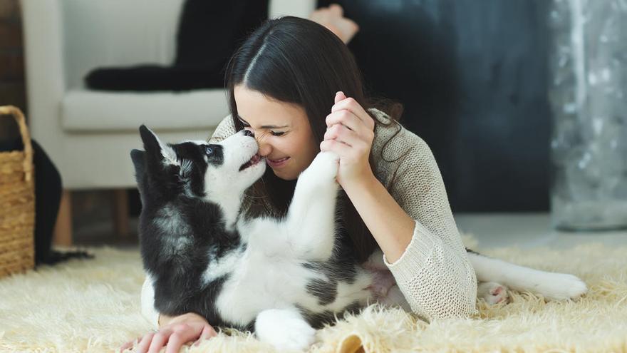 Besar o no besar a las mascotas, el dilema que reaviva el coronavirus