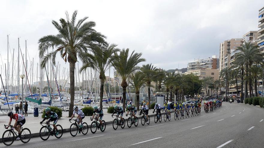 La Challenge Vuelta a Mallorca cierra al tráfico el Paseo Marítimo de Palma
