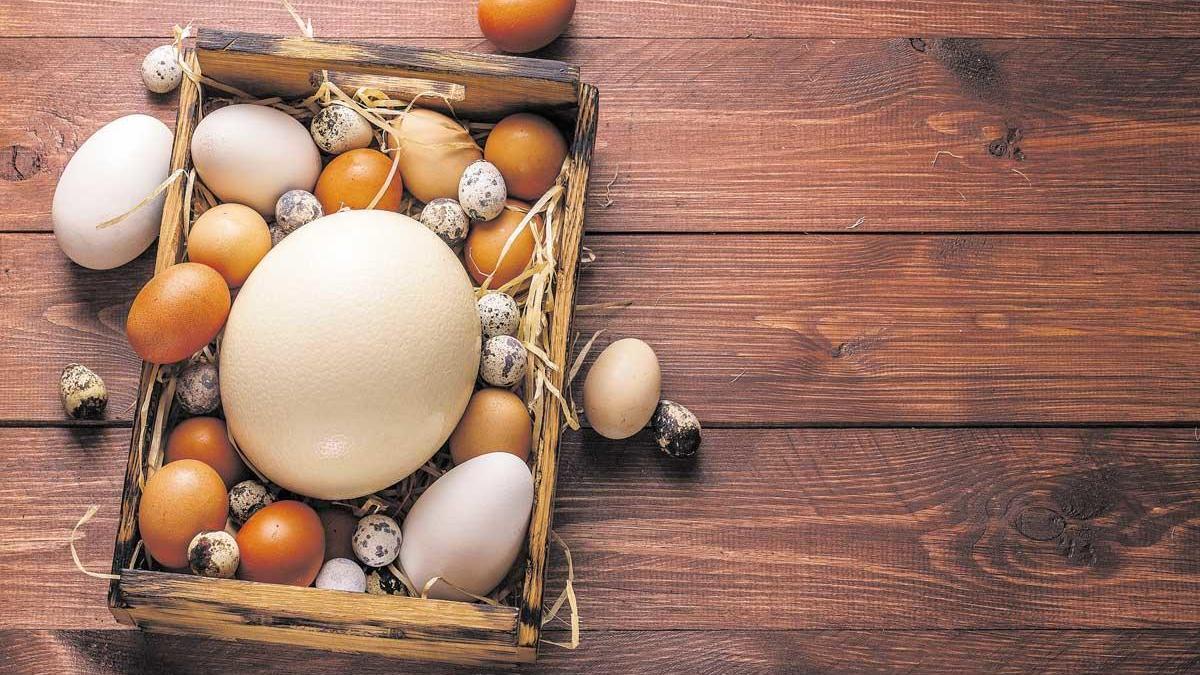 El huevo en el centro.