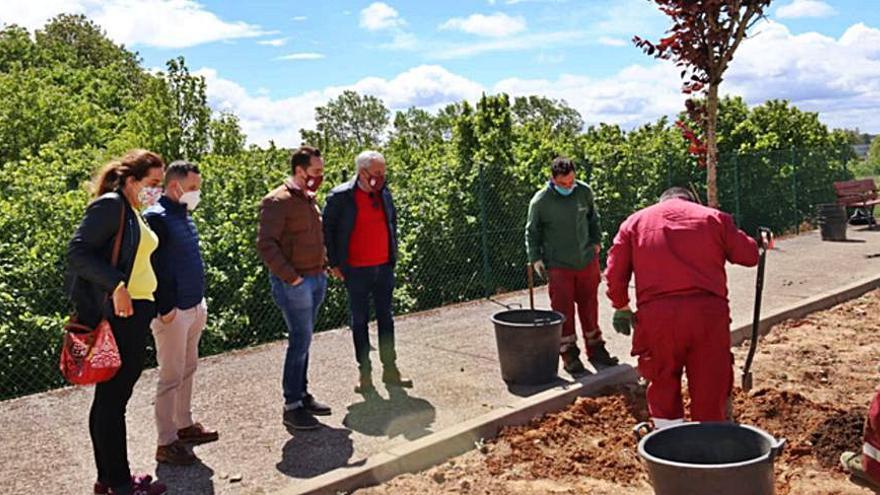 Benavente recupera una nueva zona verde en el Camino de Miraflores