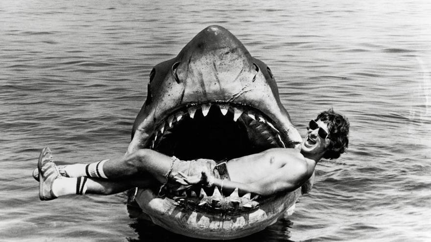 Tiburón en tierra firme