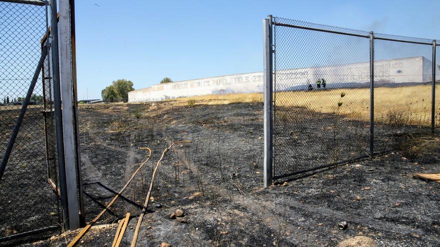 Los bomberos acuden hasta en cuatro ocasiones a extinguir un fuego de pastos en El Fontanar