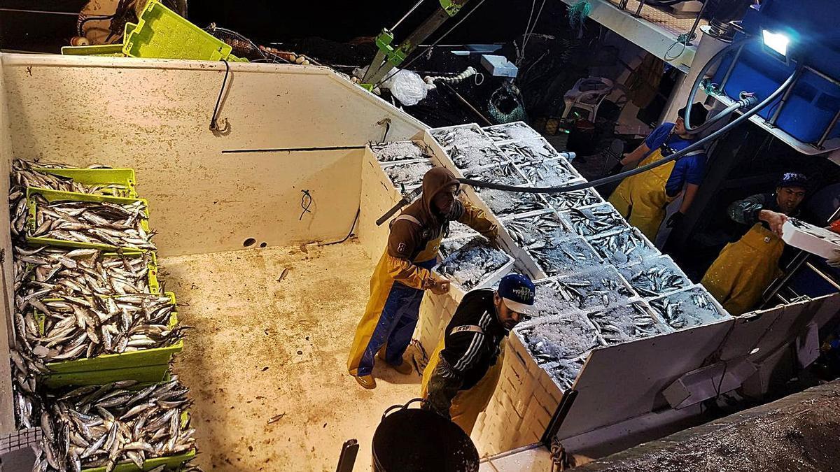 Pescadores de Marbella, uno de los colectivos que se beneficiarán de las ayudas.