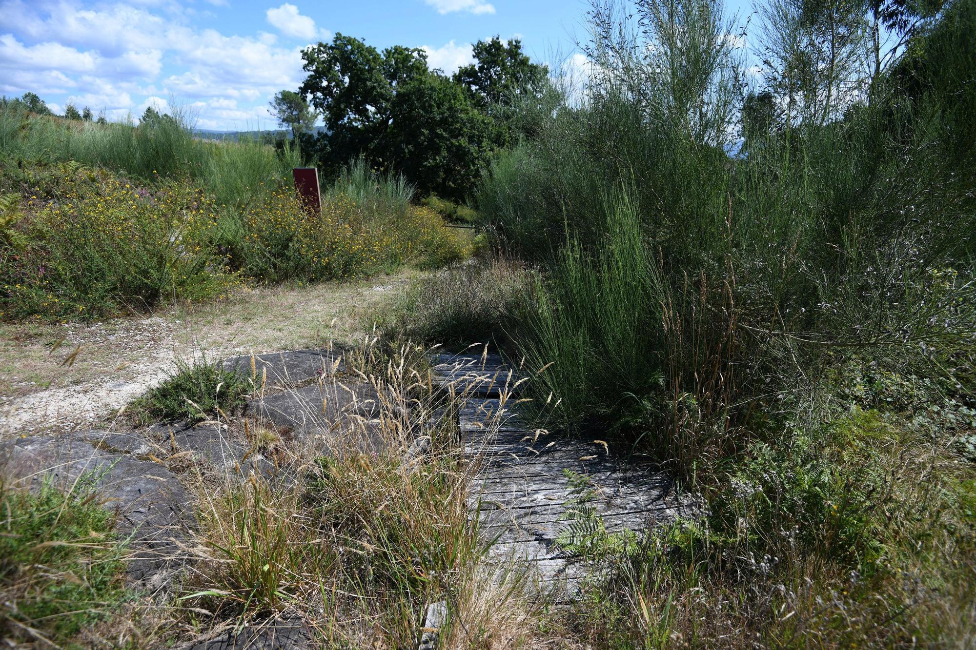 El deterioro invade el área arqueológica de Tourón