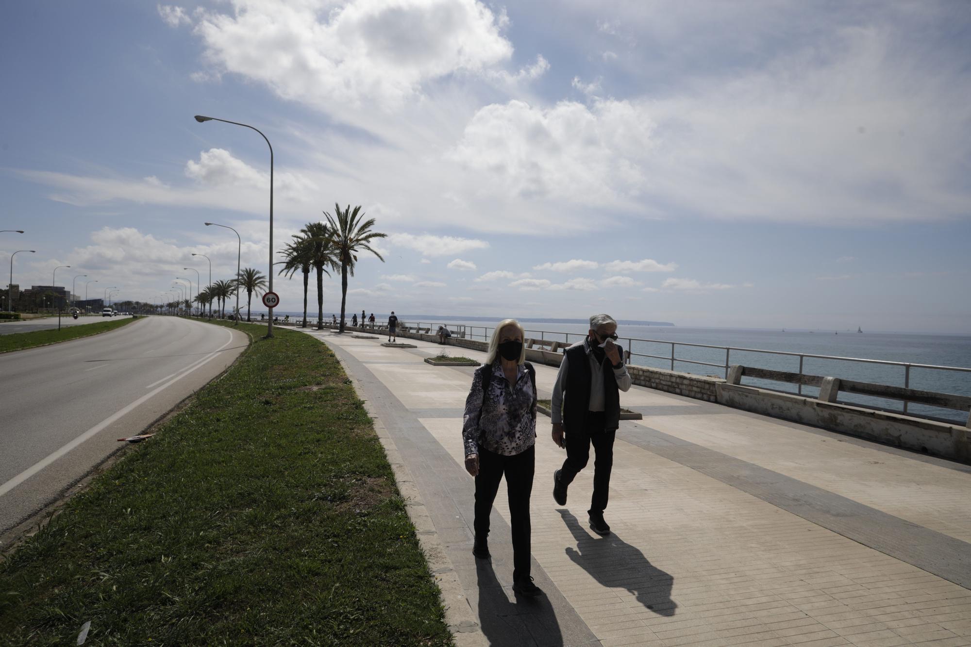 Protesta en Palma para reclamar compensaciones por la insularidad