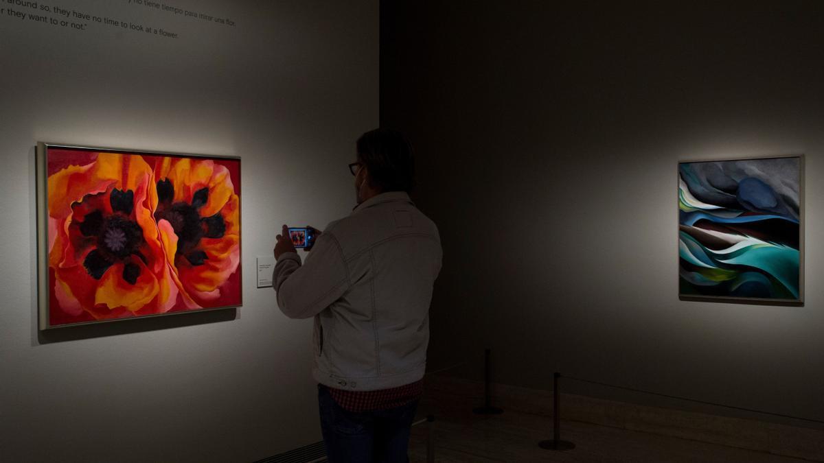 Vista de la exposición de Georgia O'Keeffe en el Museo Thyssen