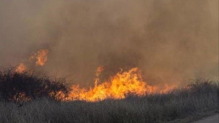 Un incendio en Ayoó de Vidriales arrasa algo más de dos hectáreas de pastizales