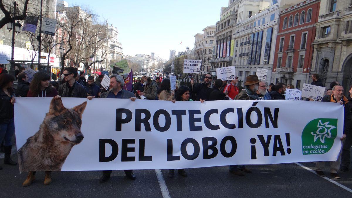 Manifestación a favor de la protección del lobo de Ecologistas en Acción. / ECOLOGISTAS EN ACCIÓN