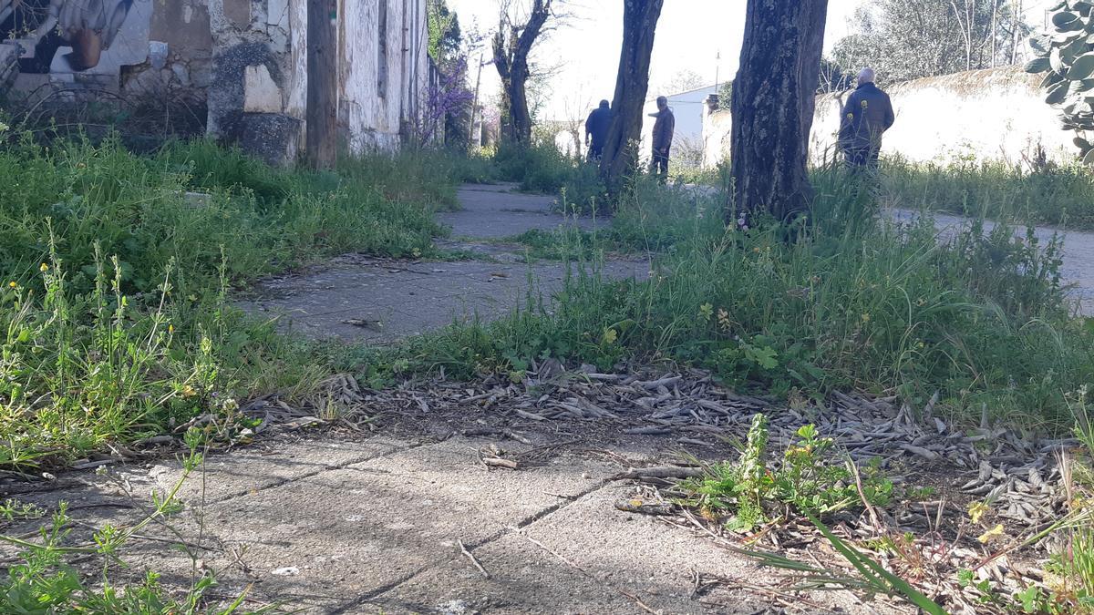 Imagen de las aceras de la calle principal. No hay servicios públicos que permitan mantener la barriada.