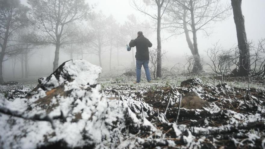 Vilagarcía amanece helada y los copos de nieve llegan al monte de Xiabre