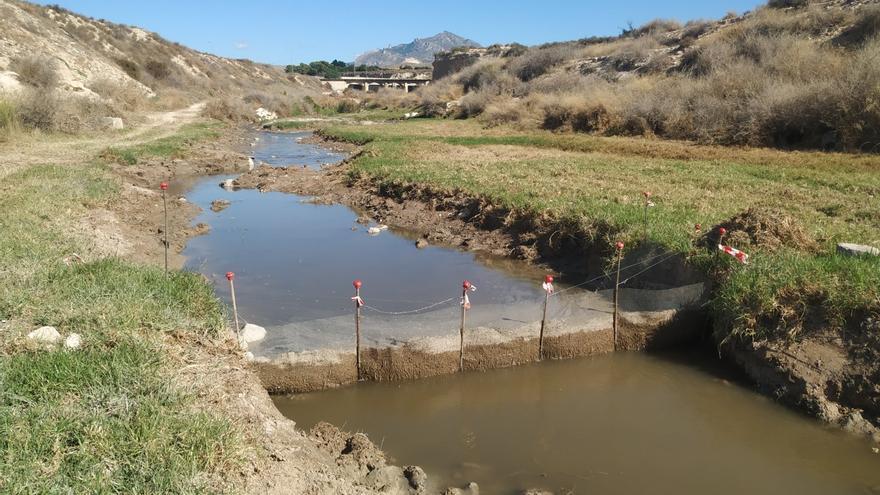 La CHJ elimina una planta acuática invasora que amenazaba la flora y fauna del río Seco