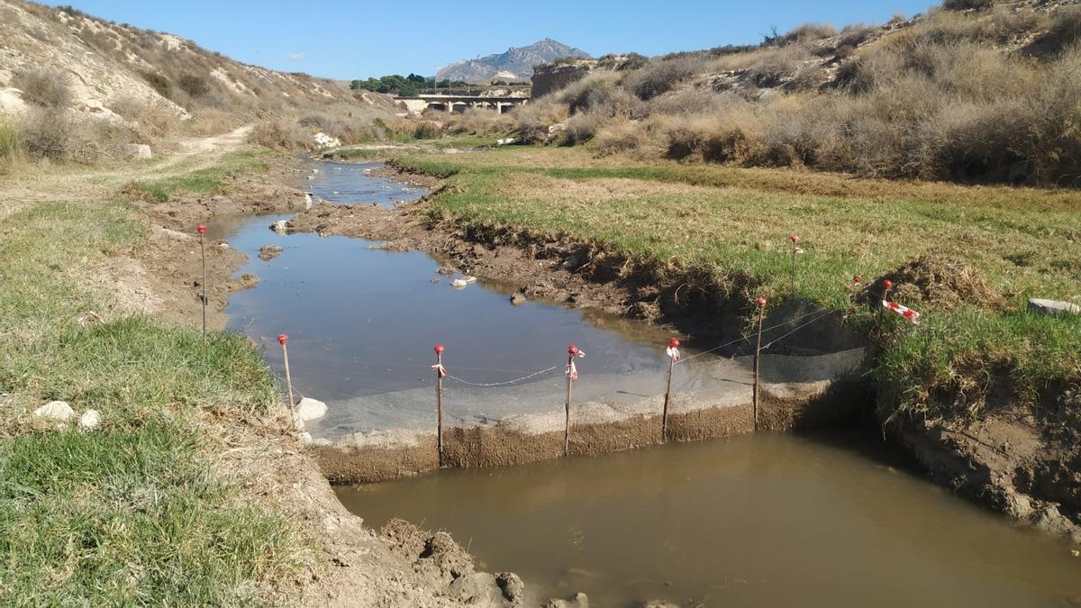 Los trabajos han conllevado el desbroce de buena parte del cauce y la instalación de una redes provisionales para evitar que los restos de las plantas vayan aguas abajo.