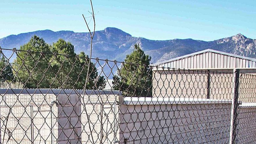 Movilización de las protectoras contra la empresa que gestionará el albergue de El Comtat