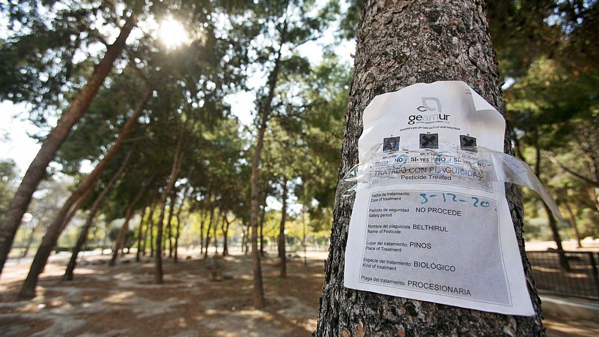 Cartel del tratamiento contra la procesionaria realizado en el parque Lo Morant.