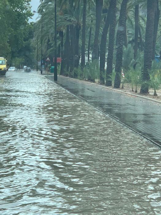 Las lluvias han provocado pequeñas inundaciones en los barrios situados junto a la ladera de la Sierra de Orihuela