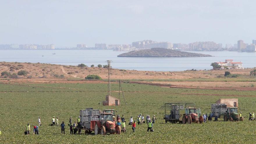 470 hectáreas de regadío ilegal en el Mar Menor denunciadas en 2018 siguen con riego