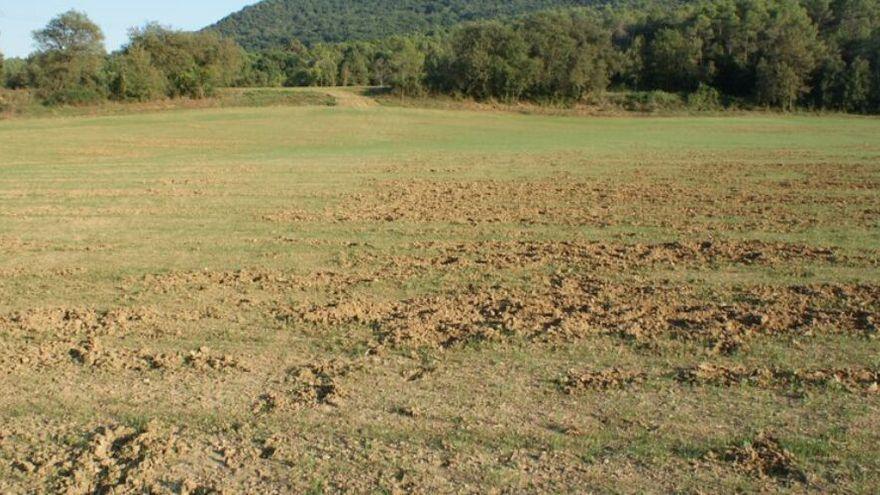 Unió de Pagesos també s'oposa a la prohibició de caça a Vilabertran