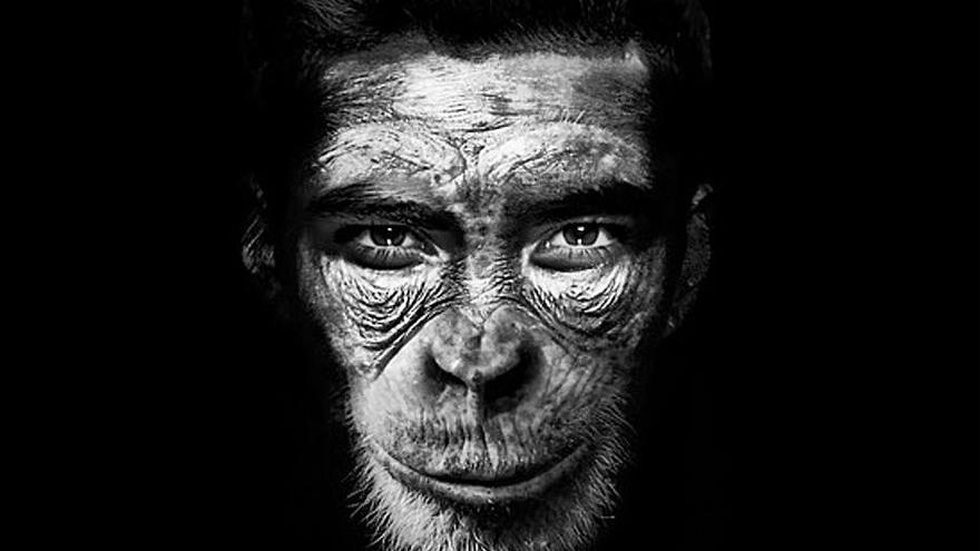 Una vez existió un chimpancé humano
