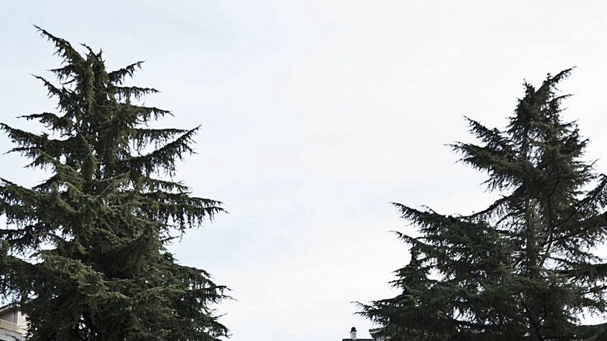 Mieres despeina al cedro