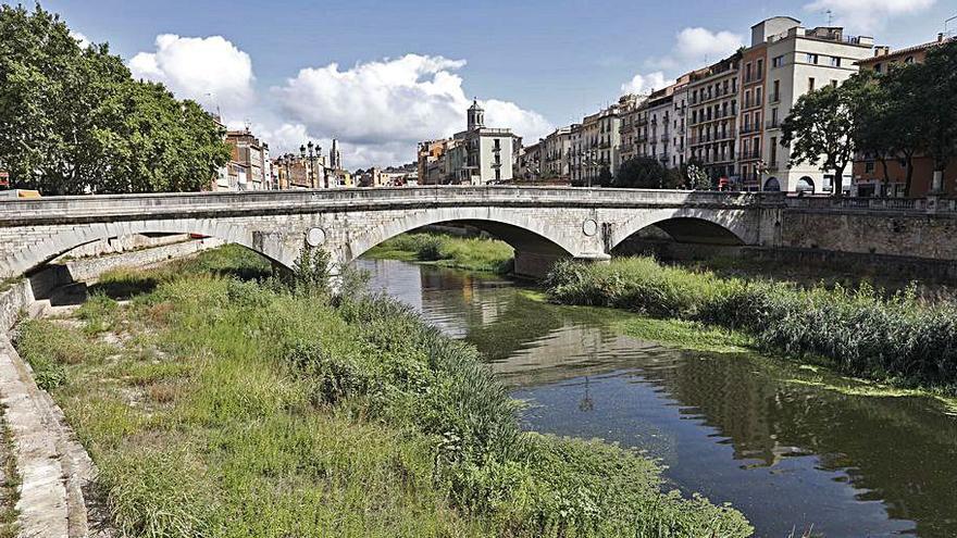 Les herbes de la llera de l'Onyar al seu pas per Girona se segaran a mitjans de mes