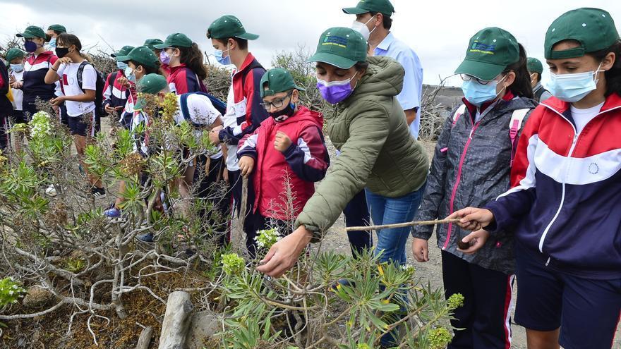 Medio Ambiente lanza un programa para dar a conocer los espacios naturales del municipio