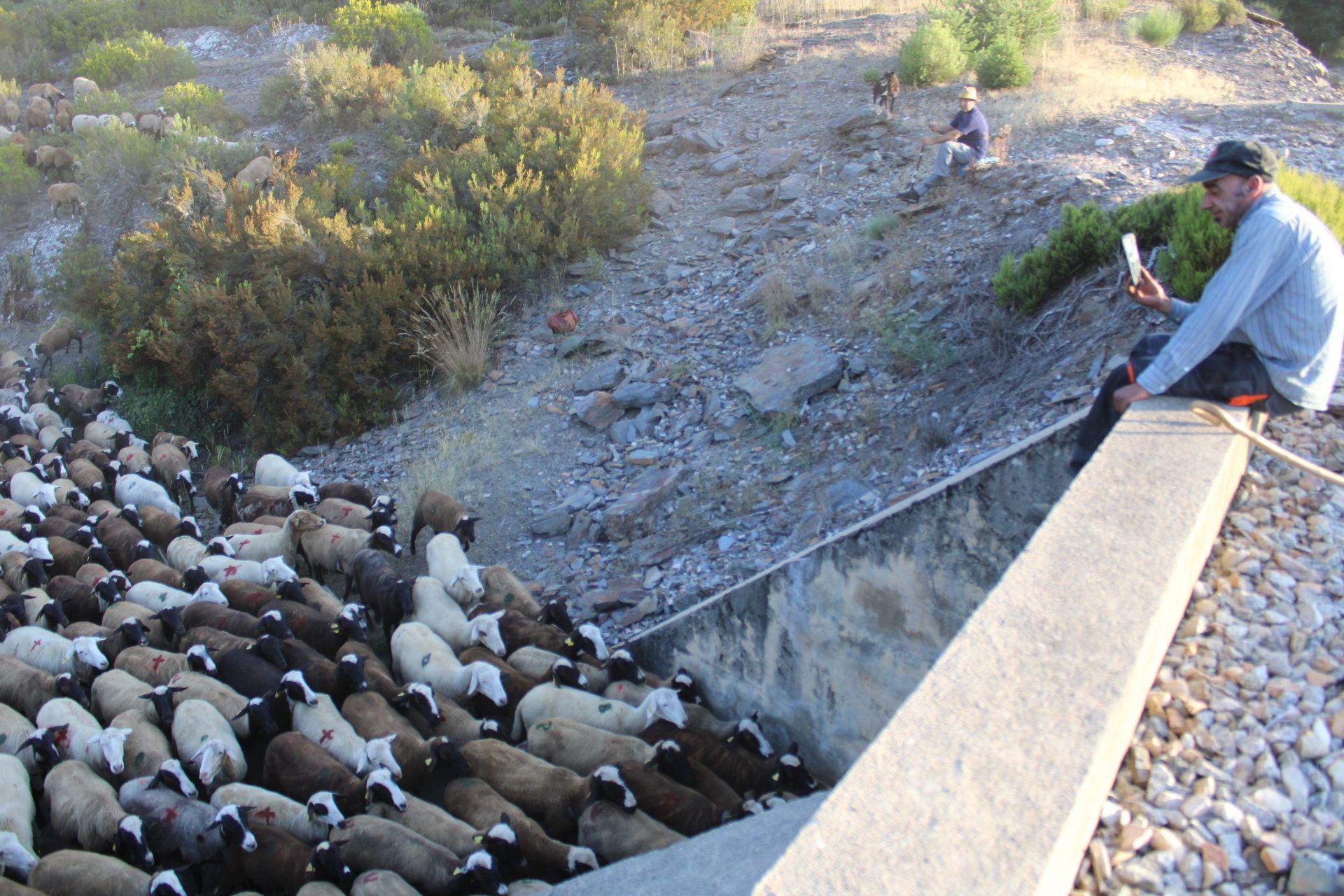Otra imagen del paso bajo la línea férrea en Robledo.