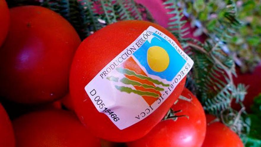 La ley agroalimentaria prohíbe los cultivos transgénicos en las Islas