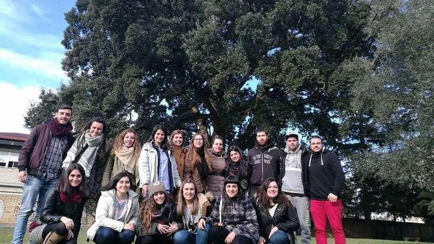 Alumnos del CIFP Portovello realizan un trabajo de puesta en valor de árboles singulares