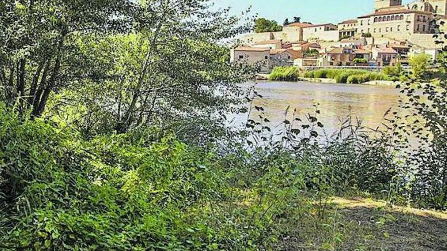 El PSOE de Zamora denuncia nuevos vertidos de aguas fecales en la zona de Los Pelambres